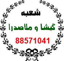 مبل شویی تهران