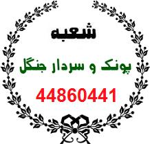 مبل شویی تهران در پونک